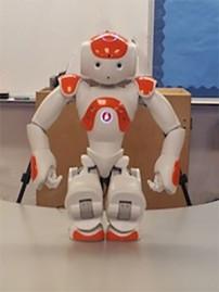 robo-big-SS-202x269
